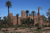 Ksar and palm trees