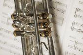 Part Of Trumpet