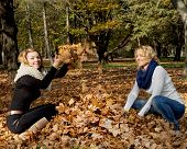 Two Young Caucasian Women Throwing Yellow Leaves