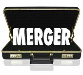Merger Word Briefcase Offer Proposal Combine Businesses