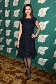 LOS ANGELES - FEB 28:  Finola Hughes at the 2014 Publicist Luncheon at Beverly Wilshire Hotel on Feb