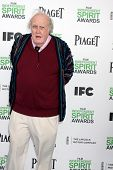 LOS ANGELES - MAR 1:  M Emmet Walsh at the Film Independent Spirit Awards at Tent on the Beach on Ma