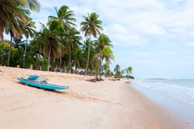 image of rn  - Beach at low tide with palms and boat in foreground Pititinga Natal  - JPG