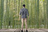 Man standing and looking into the bamboo forest, concept of relax, freedom, zen etc.