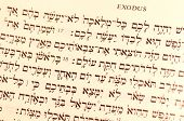 stock photo of hebrew  - Hebrew Passover text from the Book of Exodus  - JPG