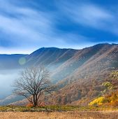 Autumn morning in crimean mountains