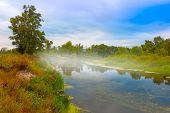Misty morning scene on river