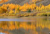 Colorful Aspen tree reflections in the lake
