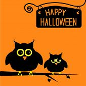 Happy Halloween  Cute Owls Card.
