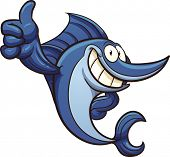 foto of swordfish  - Cartoon swordfish - JPG