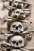stock photo of burial-vault  - Human skull in the basement vault lined one over the other. Symbol pirate flag