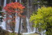 waterfall in fall, yunnan china.