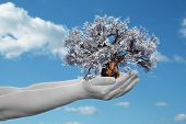 Concept or conceptual human man or woman hand holding a spring flower tree and blue sky with clouds