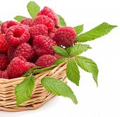 Raspberries With Green Leaves In A Wicker Basket