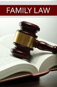 Judge's gavel on book and Family LAW text on light background