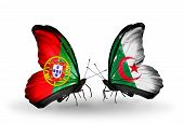 Two Butterflies With Flags On Wings As Symbol Of Relations Portugal And Algeria