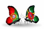 Two Butterflies With Flags On Wings As Symbol Of Relations Portugal And Dominica