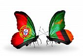 Two Butterflies With Flags On Wings As Symbol Of Relations Portugal And Zambia