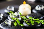 Beautiful Spa Setting Of Green Twig Fern, Ice And Candles On Zen Basalt Stones With Dew, Closeup