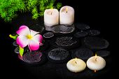 Beautiful Spa Background Of Plumeria Flower, Green Branch Asparagus With Drops And Candles On Zen St