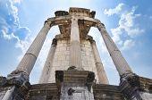 Temple of Vesta at the Roman Forum