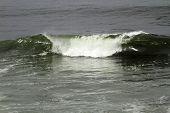 Breaking Wave In Ocean Water