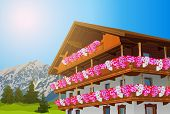 Alps traditional house with flowers. Summer season. EPS 10 format.