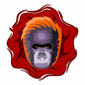 Gorilla head. Design color vector illustration.