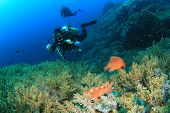 Young woman scuba diver explores coral reef