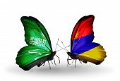 Two Butterflies With Flags On Wings As Symbol Of Relations Saudi Arabia And Armenia