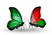 Two Butterflies With Flags On Wings As Symbol Of Relations Saudi Arabia And Belarus