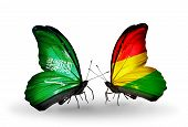 Two Butterflies With Flags On Wings As Symbol Of Relations Saudi Arabia And Bolivia
