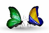 Two Butterflies With Flags On Wings As Symbol Of Relations Saudi Arabia And Bosnia And Herzegovina
