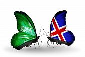 Two Butterflies With Flags On Wings As Symbol Of Relations Saudi Arabia And  Iceland