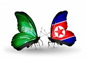 Two Butterflies With Flags On Wings As Symbol Of Relations Saudi Arabia And North Korea