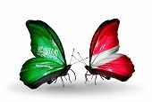 Two Butterflies With Flags On Wings As Symbol Of Relations Saudi Arabia And Latvia