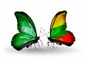 Two Butterflies With Flags On Wings As Symbol Of Relations Saudi Arabia And Lithuania