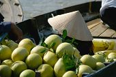 stock photo of pomelo  - Pomelos and seller with traditional ricestraw - JPG