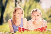 two young pretty woman in summer park reading book
