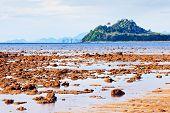 pic of tide  - andaman sea at low tide - JPG