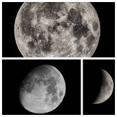 stock photo of full_moon  - Collage of moon views seen with a telescope including full moon gibbous and quarter - JPG