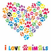 foto of color animal  - Colorful heart with animals footprints and text I love animals - JPG