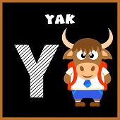 picture of yaks  - The English alphabet letter Y Yak  - JPG
