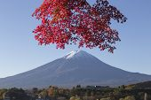 stock photo of mount fuji  - This photo was shot from the area around Mt - JPG