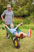 stock photo of wheelbarrow  - Happy grandfather and his granddaughter with a wheelbarrow in a sunny day - JPG