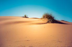 stock photo of sahara desert  - Hot sand dunes in the Sahara desert Morocco - JPG