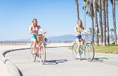 Постер, плакат: Women Cycling