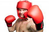 Professional Boxer Punching Isolated On White Background