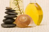 Essential oils and massage stones