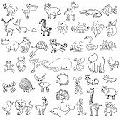 Постер, плакат: Doodle animals childrens drawing